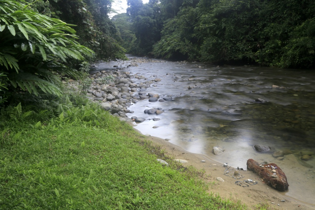 Melinau River, beside Camp 5 (Mulu NP)