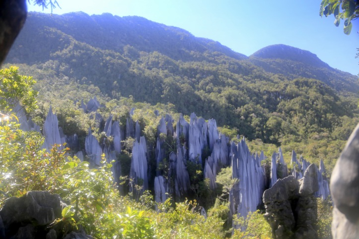 Pinnacles, Mulu NP