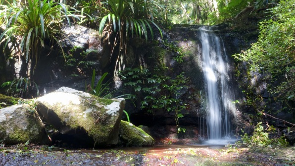 Gwongarragong Falls on the Coomera Circuit track (Lamington National Park)