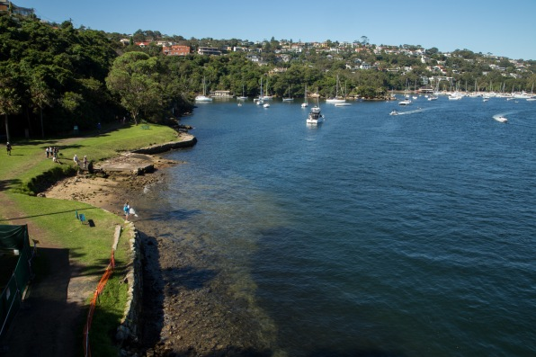 Ellery's Punt Reserve at the start of Spit to Manly walk