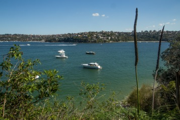 Middle Harbour from Sydney National Park