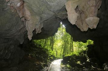Green Cave (Mulu NP)