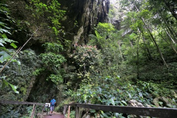 Path to Deer Cave (Mulu NP)