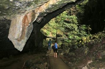 Deer Cave (Mulu NP)