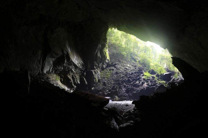 Garden of Eden, Deer Cave (Mulu NP)