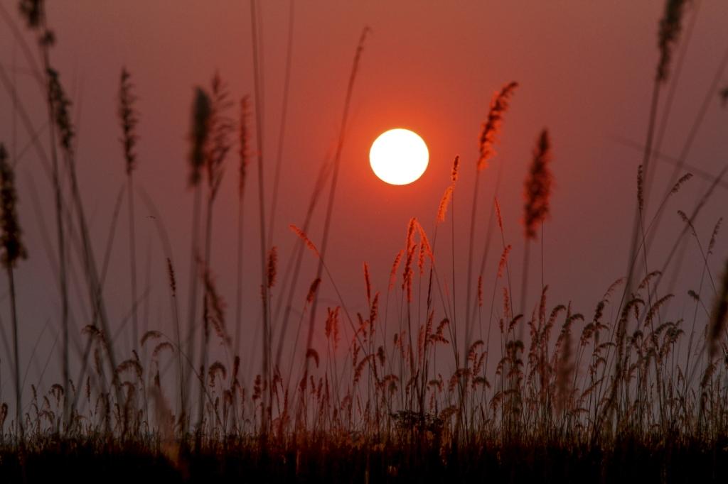Sunrise over the Okavango Delta on our last morning at Okuti Camp