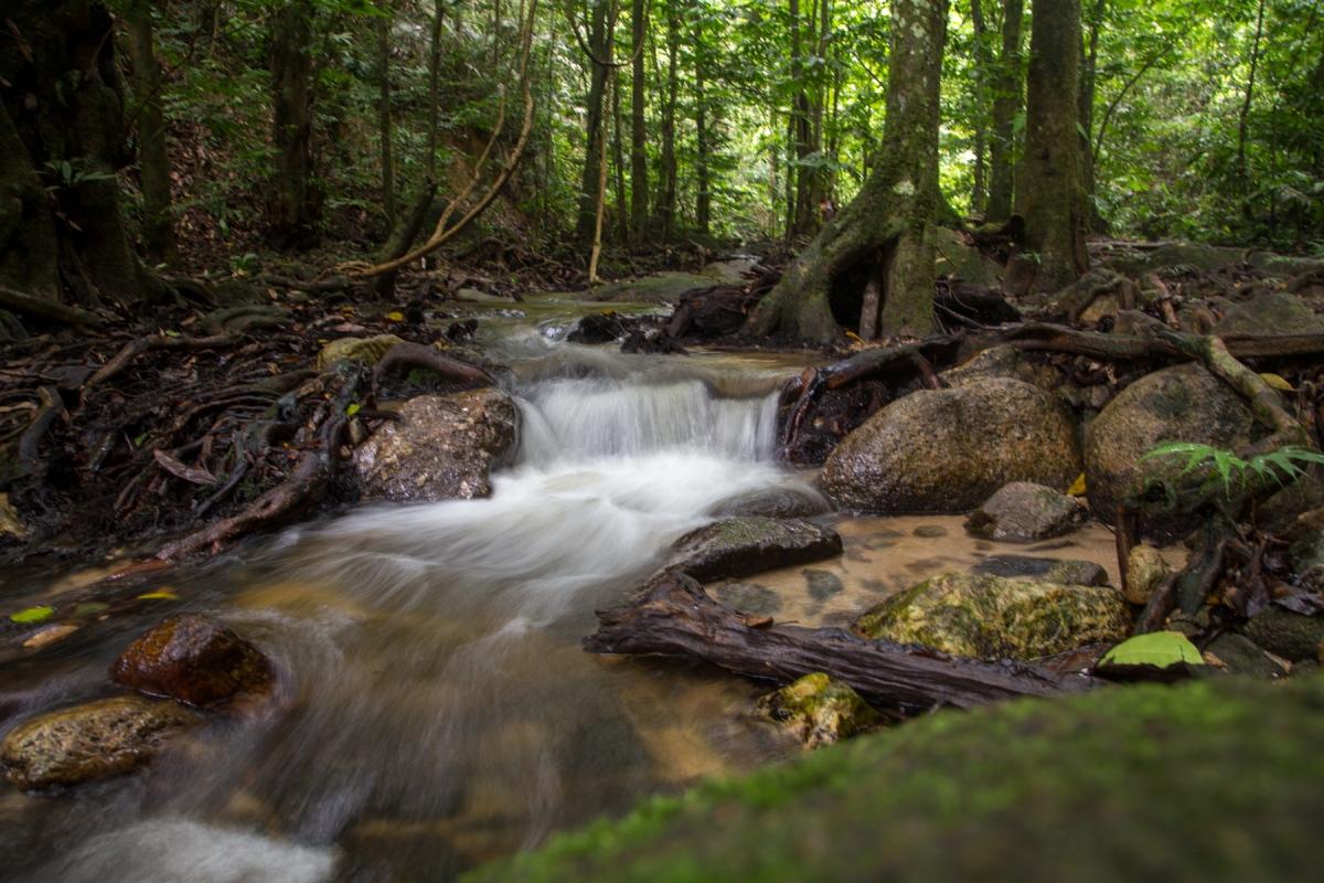 Pisang Falls (Sungai Pisang)