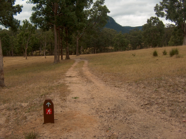 Six Foot Track through farmland after crossing Megalong Road