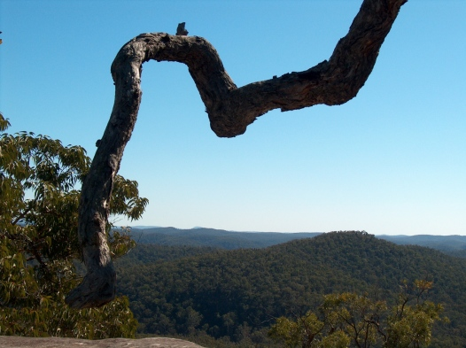 View over Yengo NP from Mt Lockyer